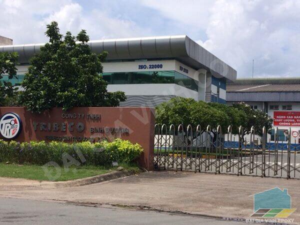 Công ty Tribeco Việt Nam